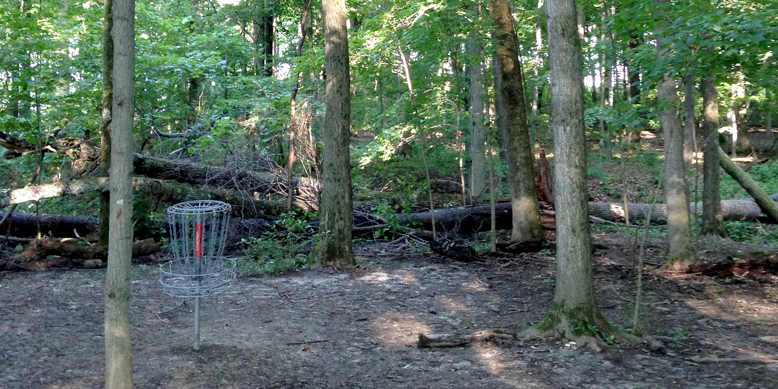 disc golf basket in the woods